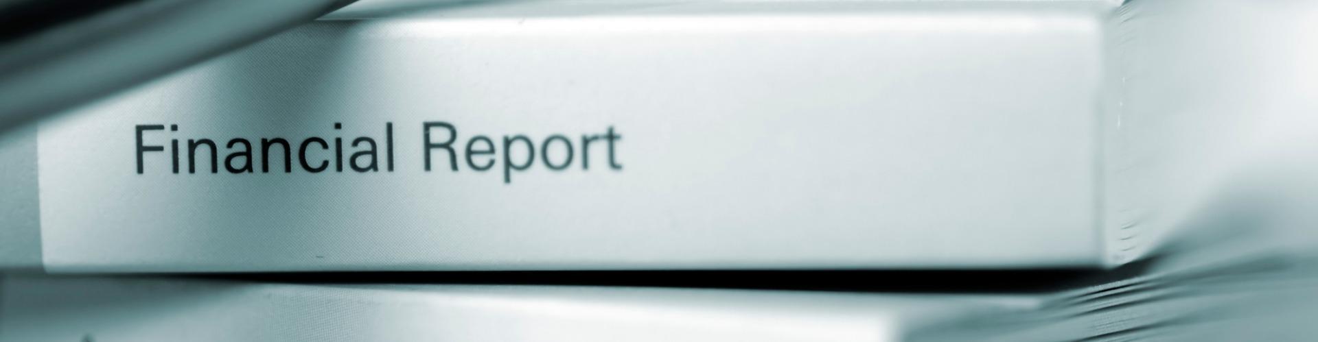 Report of Local Government Finance (RLGF)